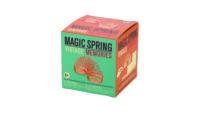 "Vintage Memories ""MAGIC SPRING"""